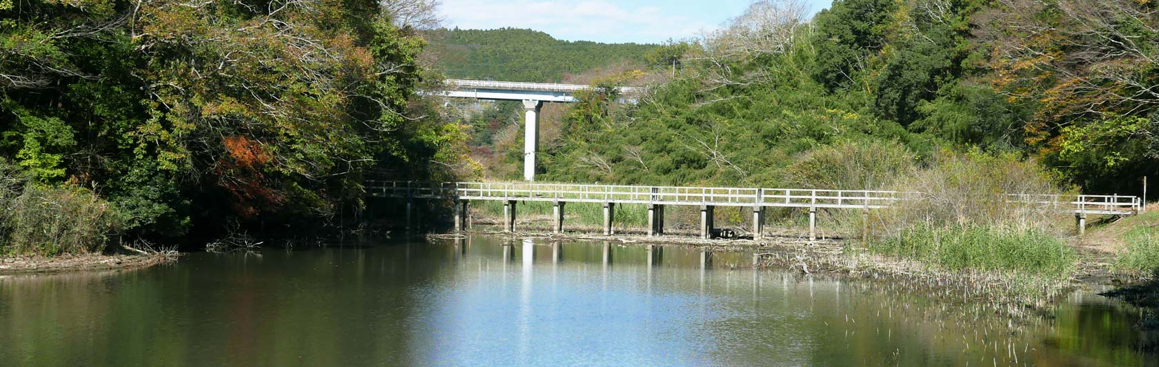 亀山湖の水辺公園